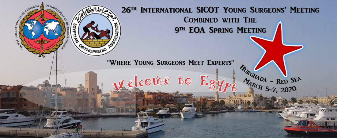 26th International SICOT Young Surgeons' Meeting